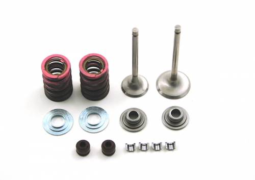 Trail Bikes - Trail Bikes Honda CRF110 Big Valve Kit
