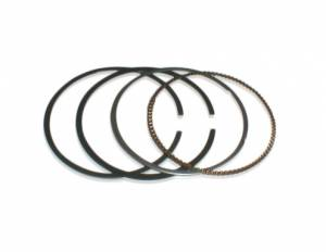 6 Volt Piston ring kit  (12 V is Part #TBW0280)